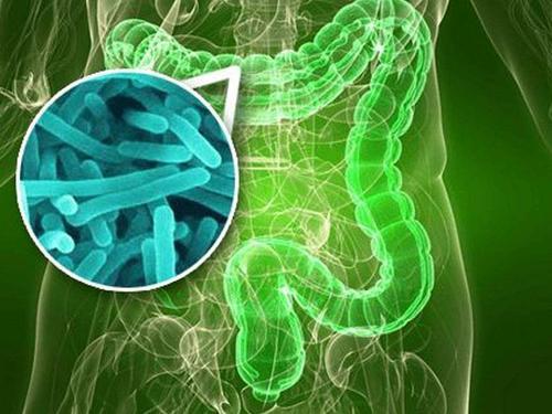 菌群移植治疗方案提供商承葛生物完成数千万元天使轮和Pre-A轮融资