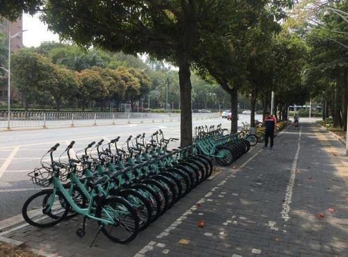 滴滴在深圳投放青桔单车仅一天就被叫停 属违规投放被勒令立即收回