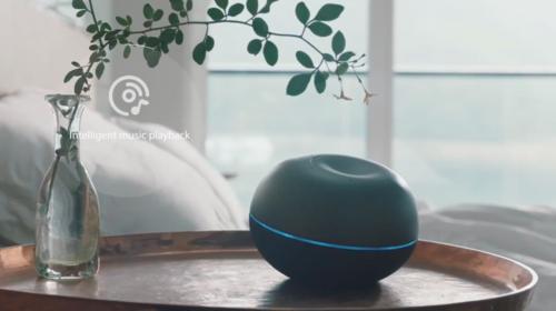 智能交互机器人研发商Rokid获新投资 淡马锡领投