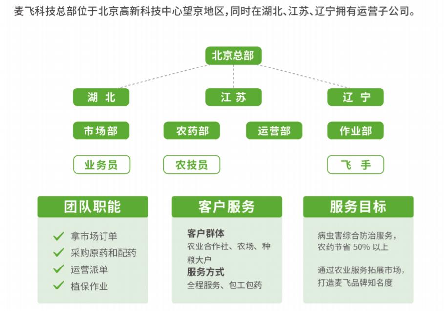 """""""麦飞""""的组织架构图。"""