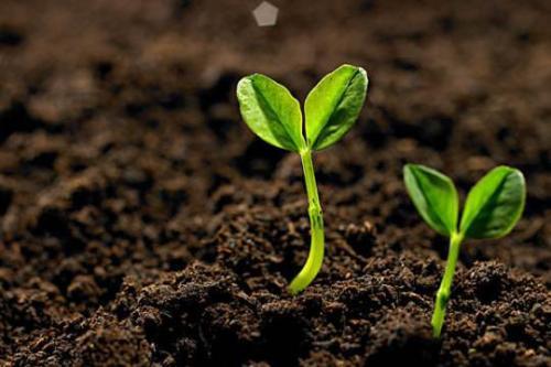 """专注于自主研发土壤修复技术和装备 """"盖亚科技""""完成近亿元B轮融资"""