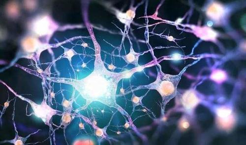 Anelixis获新一轮融资 专注开发神经退行性疾病免疫调节药物